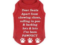 Dear Santa Christmas Dog T-Shirts