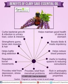 Health Benefits of Clary Sage ~ Antibacterial, drug addiction, regulates bowel movements, Relief from depression & anxiety, Boost libido & treats impotency, reduces blood pressure. *Avoid if pregnant or nursing