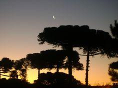 Nightfall in Canela - RS - Brazil