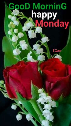 Good Morning Happy Monday, Good Morning Roses, Happy Day, Monday Blessings, Happy Friendship Day, Allah, Blessed, Night, Nails
