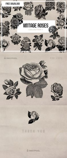 Vintage Rose and Flower lllustrations , from AndrewDesign , is a collection of vintage rose and flower illustrations for your next project. Perfect for branding and invitation design. Includes: 16 EPS files 16 PNG files Free for personal & commercial use Flower Graphic Design, Vintage Graphic Design, Rose Illustration, Flower Illustrations, Free Design Resources, Rose Reference, Clip Art, Vintage Flowers, Art Inspo