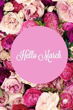 Peony & Rose Hello March march hello march march quotes hello march image quotes floral march quotes
