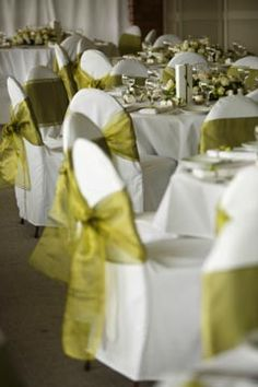 Wedding decor with pastel green, simple yet elegant