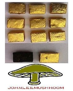 Pu erh black tea brick fermented mini Tuocha, total 500 grams in bag packing #JOHNLEEMUSHROOMRESELLER