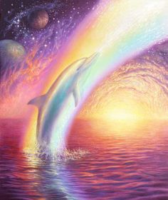 what drugs is the dolphin on?! hook me up wit some ♡