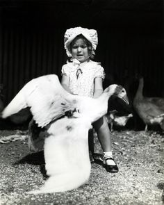 Shirley Temple ~ 1934