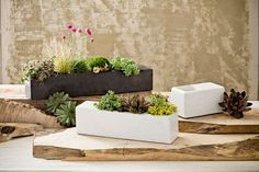 Concrete planters can be surprisingly elegant in front of a home, ...