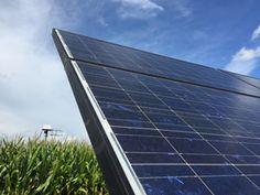 All instruments used for the EcoSpec project are solar powered.