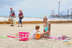 Got a case of the seaweed blues? Here's what else there is to do in Galveston Massive piles of seaweed are overtaking portions of some beaches in Galveston. Worry not. Here's what else the island has to offer. Photo: James Nielsen, Houston Chronicle