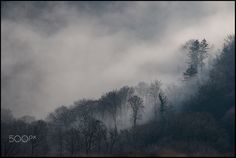 Misty Mountain My Photos, Mountain, River, Outdoor, Outdoors, Rivers, The Great Outdoors