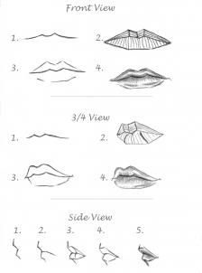 Delineate Your Lips - how to draw realistic lips, sketch lips step 6 - How to draw lips correctly? The first thing to keep in mind is the shape of your lips: if they are thin or thick and if you have the M (or heart) pronounced or barely suggested. Sketch Mouth, Lips Sketch, Mouth Drawing, Drawing Faces, Lip Drawings, Hair Sketch, Realistic Rose, Realistic Drawings, Easy Drawings