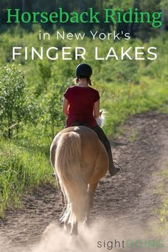 If you want to go horseback riding in the Finger Lakes NY, Painted Bar Stables on Seneca Lake (near Watkins Glen) is a great choice for spectacular scenery and personalized rides. York Things To Do, Fun Things, Montour Falls, Seneca Lake, Watkins Glen, Dressage Horses, Finger Lakes, Before Sunset, Trail Riding