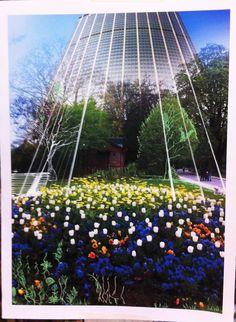 Jardin, mémoire d'un lieu : phot-peinture