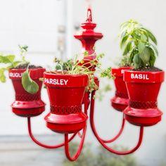 Chandelier Herb Garden 🌿