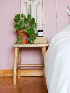 Pileapeperomiodes Nightstand, Stool, Table, Furniture, Plants, Home Decor, Large Bedroom, Home Decoration, Mountain