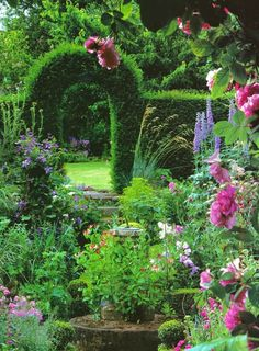 I'd love to go for a stroll through this lovely garden.