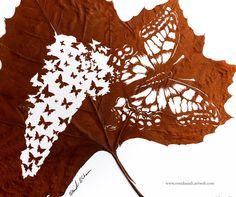 Solidarity! Handmade Leaf Cut by: Omid Asadi