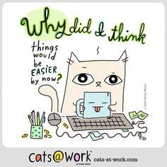 False. ^__^ http://www.cats-at-work.com