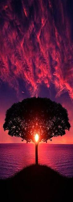 Silenciar as vezes quando as pessoas querem que gritamos é o melhor remédio,para frustrar a alma de quem vive na escuridão... Devo apenas olhar o que nossa alma pode oferecer!Que é paz!! Paz enquanto muito querem guerra, não precisamos é nem devemos absorver acusações de quem não gosta da gente.