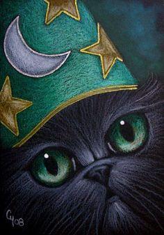 FANTASY PERSIAN CAT - WIZARD HAT 3