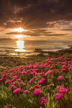TOP 10 Photos of Sunsets - Ireland