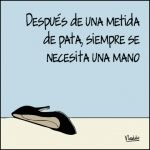 Humor Grafico, Ecards, Quotes, Medicine, Words, Messages, E Cards, Quotations, Quote