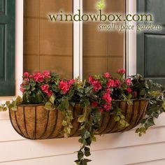 Windowbox (insert not-fake flowers)