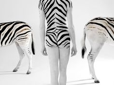 ANIMAL BODY PAINTING......BY LENNETTE NEWELL....BARCROFT.....USA.....BING IMAGES........