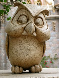 sleeping beauty owl