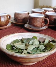 Coca tea, Cusco, Peru.  Helps deal with reactions to the high altitude.