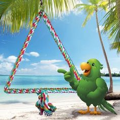"""Paco's Pick Triangle Swing 2 Sizes Available!  PA9706  Use coupon code PA9706  7"""" W x 11"""" H $4.45 or  12"""" W x 16"""" H $8.45 http://birdcages4less.com/page/B/PROD/Pacos-Playhouse/PA9706"""
