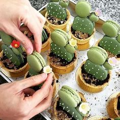 On M O N D A Y S we deserve treats #ruedeseine #loves #macaron #baking #treats #cacti Macarons by @umawadee_sriwarom ( via @bettymagazine)