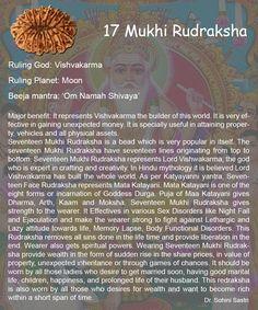 17 Mukhi Rudraksha..