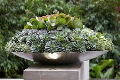 Rolling Stone Landscapes adds a pretty light to a pot with a stainless steel LED deck light.