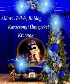 Advent, Christmas Tree, Humor, Holiday Decor, Teal Christmas Tree, Humour, Xmas Trees, Funny Photos, Christmas Trees