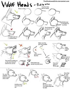 Manga Drawing Tips How I draw wolf heads by TheShadowedGrim on deviantART: Art Reference Poses, Anatomy Reference, Drawing Reference, Design Reference, Drawing Poses, Drawing Tips, Drawing Sketches, Drawing Ideas, Sketching Tips