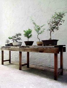 Bij gebrek aan een border; Een bankje als bijzettafel voor alle mooie planten
