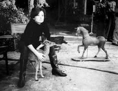 audrey hepburn horse   Audrey Hepburn, Ip the little deer and a toy horse on the set of Green ...