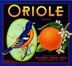 Vintage Labels, Vintage Ads, Vintage Prints, Vintage Posters, Vintage Food, Vintage Crates, Vintage Packaging, Wooden Crates, Retro Ads