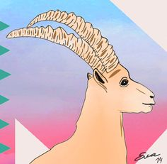 Eva Mirror Illustrations 2014 Ibex Alp by Eva Mirror