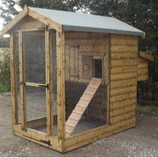 thick T & G Shiplap Internal height at eaves Fantail Pigeon, Nesting Boxes, Hens, Cladding, Outdoor Structures, Chicken, Interior, Indoor, Interiors