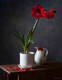 By Alina Lankina Flower Vases, Flower Art, Flower Arrangements, 3d Painting, Acrylic Paintings, Still Life Photos, Color Studies, Flower Pictures, Still Life Photography