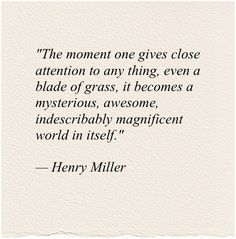 Toni Morrison Quotes Entrancing Toni Morrison Quote Names Reflectionway  Meditations .