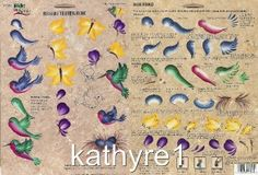 Donna Dewberry Free Patterns | Donna Dewberry One Stroke Nature's Critters RTG NEW Teaching Guide