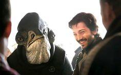 'Rogue One: Una historia de Star Wars': Uno de los Mon Calamari de la película está inspirado en Winston Churchill   La película dirigida por Gareth Edwards y protagonizada por Felicity Jones se estrena el 16 de diciembre.   Rogue One: Una historia de S... http://sientemendoza.com/2016/11/21/rogue-one-una-historia-de-star-wars-uno-de-los-mon-calamari-de-la-pelicula-esta-inspirado-en-winston-churchill/