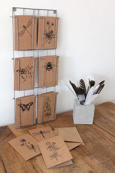 Het Noteboompje kraftkaarten insecten en botanicals