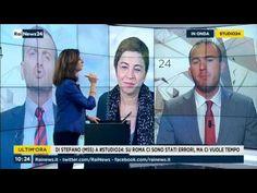 Manlio Di Stefano (M5S) a RaiNews24 28/6/2017