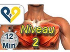 Perfektes Bauchmuskeltraining in 8 minuten, Niveau 2 - YouTube