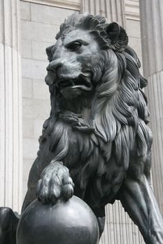 Lion Heart ?