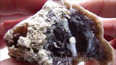 Petrified Wood Agate Rough 170 Gr
